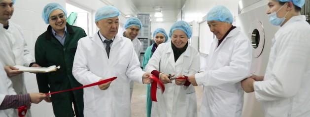 Уникальный препарат на основе кобыльего молока разработали ученые NLA